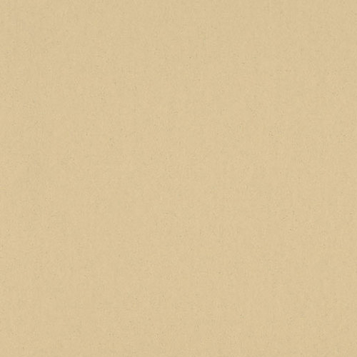 0043 Neutral Beige