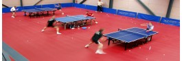 Taraflex Table Tenis