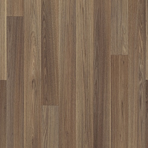 1268 Walnut Medium