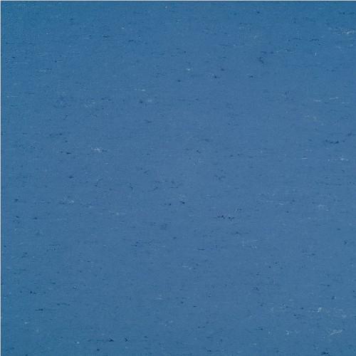 137-004 bluebird