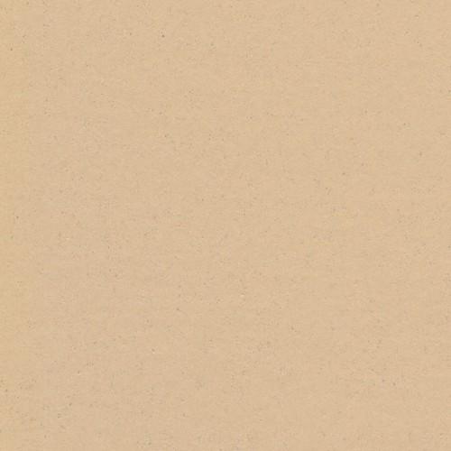 101 - 043 neutral beige