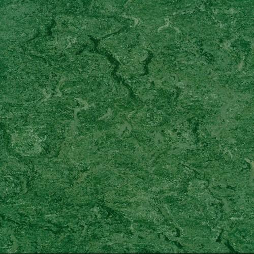 125 - 041 avocado green