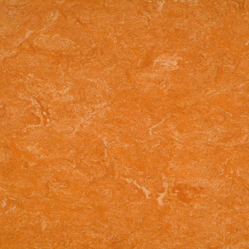 2121-073 spicy orange