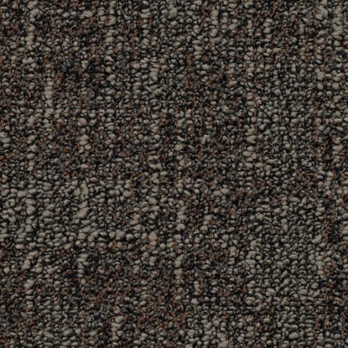 B529 2921
