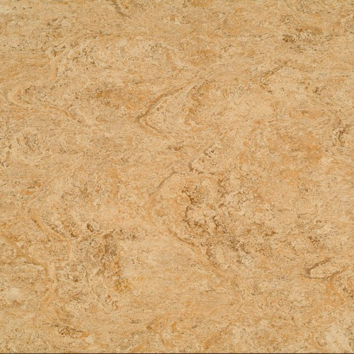 2121-070 rocky brown