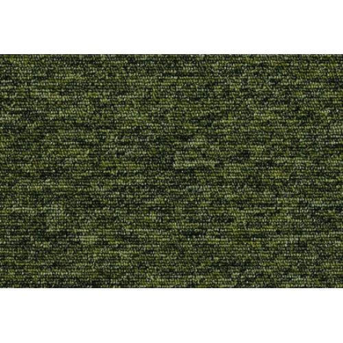 20201 tivoli guyana moss
