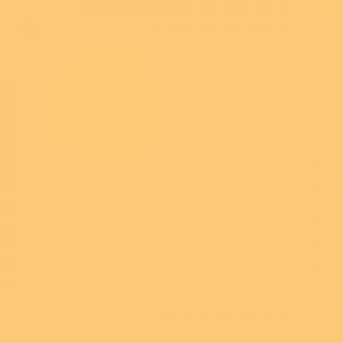 4206 orange