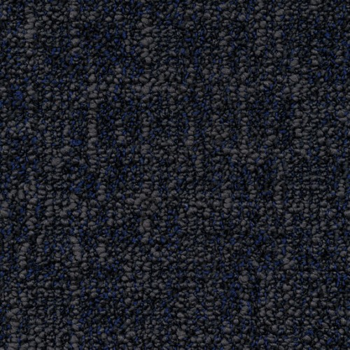 B529 3831