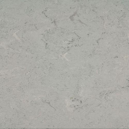 121-055 ash grey / LCH