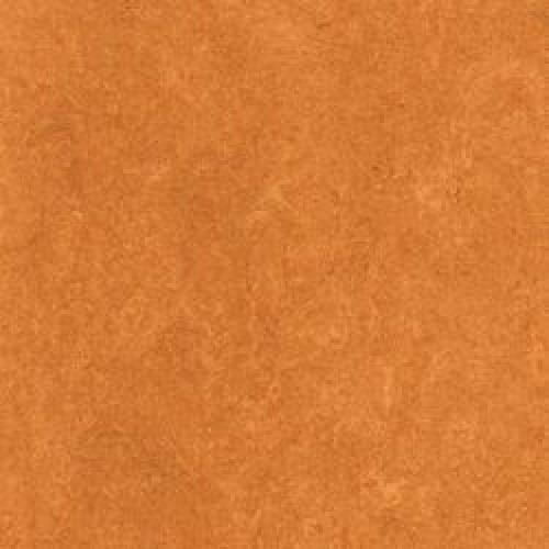 121-174 physalis orange