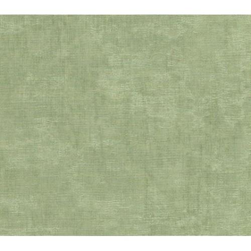 Watermark Moire 6055