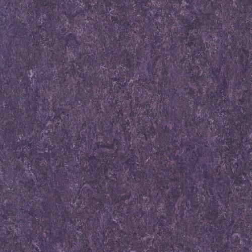 125-128 violet
