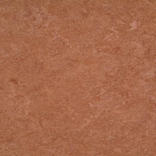 121-003 dark brown