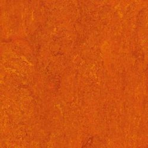 112-117 mandarin orange