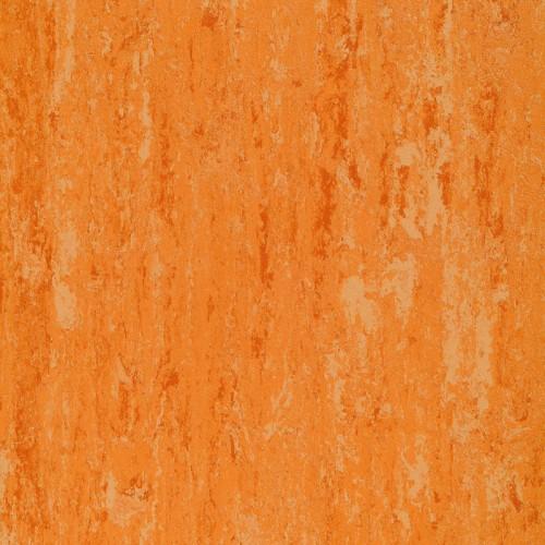 151-072 peach orange