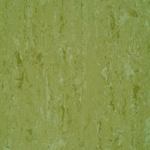 151-011 avocado green