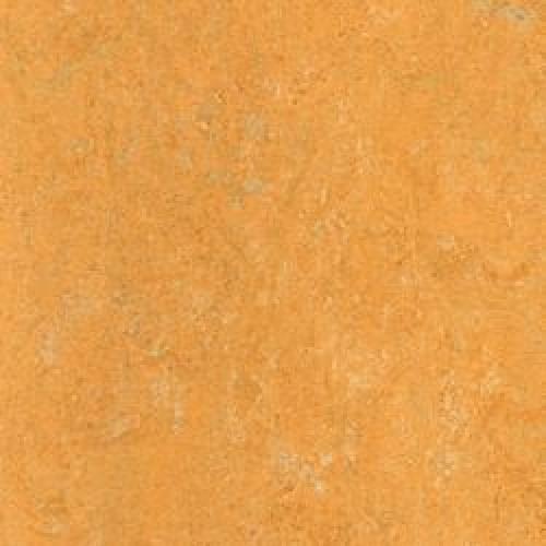121-173 melon orange