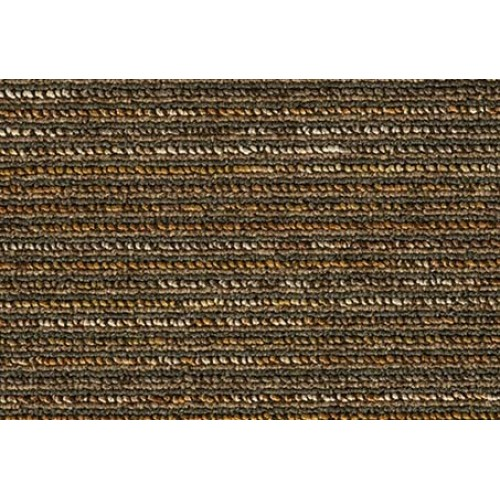 15605 banded torus