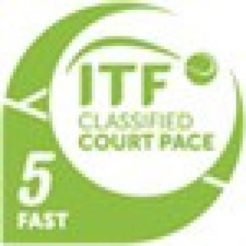 Clasificare ITF5 - Fast