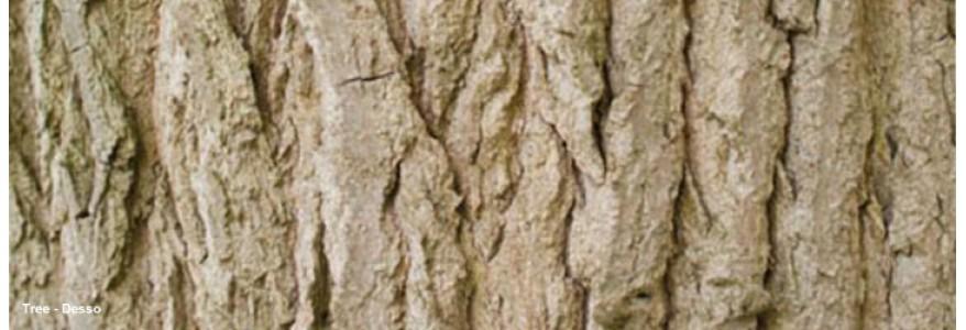 Mocheta Tree - dale